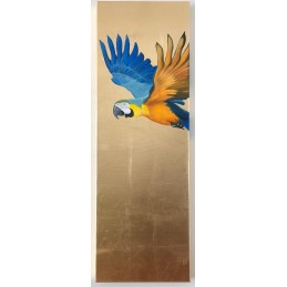 "Bild ""Blue and Gold Macaw"""